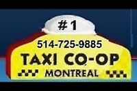 Taxi license A 11 for sale -À vendre