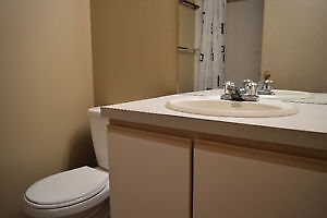 2 Bedroom 2 Bathroom Condo on 50 St for Rent