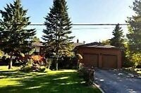 House for Sale at Yonge/May in Richmond Hill (Code 365)