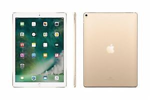 iPad Pro 12.9 512 G with Cellular 2nd Generation Warranty  Gold