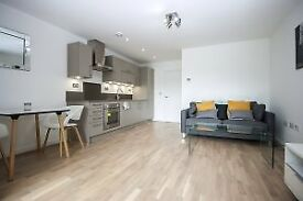 GOOD SIZE 1 BED APARTMENT IN EDEN APARTMENTS,GLENGARNOCK AVENUE,ISLE OF DOGS,AVAILABLE NOW!