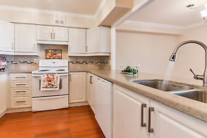 Beautiful and Professional Kitchen Redesign &Remodels Affordable London Ontario image 1