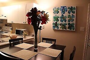 ONE BEDROOM BASEMENT APARTMENT FOR RENT ASAP