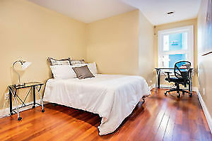 4 Month Winter Sublet in 4 bed 2 bath unit