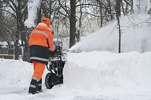 Travis's Snow Removal Fall Leaves Lawn Care Open Year Round Too Oakville / Halton Region Toronto (GTA) image 6