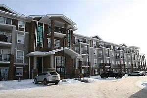 Executive 2 Bedroom Condo Available NOW. Freshly Painted!!!