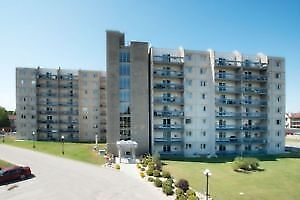 one bedroom apartment for sublease