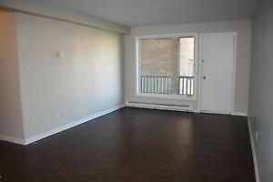1 Bedroom In 64 Crosbie Rd Available Now !
