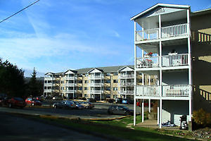 Beautiful 2 bedroom two level Clayton Park for September 1