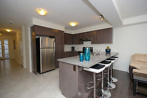 4 bedroom in south end