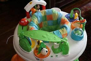 Fisher Price excer-saucer and Graco door jumper