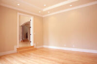 Drywall, Plaster And Paint