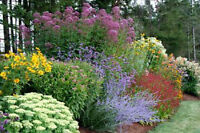 IM LOOKING FOR FREE PERENNIALS!!!!!!!