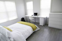 8 month room for rent with on-suite bye Durham College & UOIT