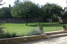 Garden design, landscaping, decking, fencing, patios, lawns, planting, tree and large hedge pruning.