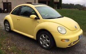 2003 Volkswagen Beetle Coupe (2 door). A Fun, Reliable Car