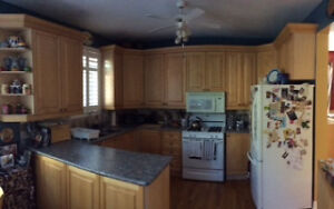 FROM RENO, USED Kitchen cabinets and countertop.