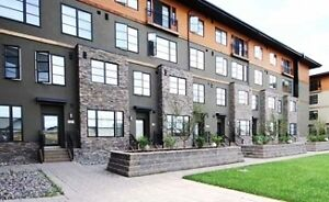 Top end living in a luxury condo. AMAZING amenities $1395/month