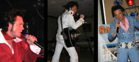 Elvis Tribute Artist Available for your special occasion