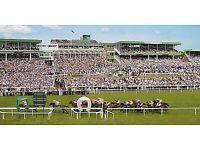 Newcastle races tickets x2 thur&fri night