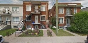 Fully Renovated 3 1/2 by Loyola Campus of Concordia U. $700