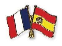French and Spanish Language tutor