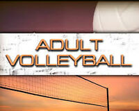 Co-ed (Indoor/Outdoor) Volleyball Group –Looking for individuals