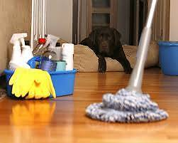End of lease cleaning 100% Bond Back Guarantee Start From $129 Carlton Melbourne City Preview