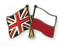 English and Polish tutoring effectively via Skype, etc. Translation, copywriting and SEO services.