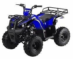 ATVS 125CC  WITH REVERSE 1-800-709-6249