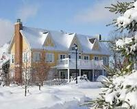 Horseshoe Valley, Carriage Hills Resort - DISCOUNTED !