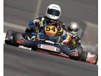 Wanted a racing go kart to suit teen to adult