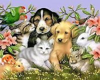 *************Experienced Pet Sitter**************