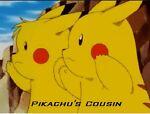 Pikachu's Cousin's Store