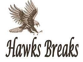 Hawks Breaks