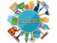 cleaning the house, rooms, kitchen, bathroom