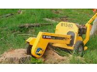 Stump grinding / removal by meadow view landscaping