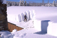 Rooftop snow removal and roofing repairs starting at $150