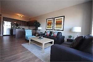 Furnished 2 bedroom in the modern Zen Building downtown!