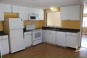 Beautiful 3 bedroom mini home for rent quiet area pets allowed