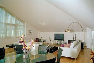 A Large 1 Bedroom Apartment in Fox Apartaments