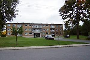 Delmar and Saint Louis: 507 Avenue Delmar, 1BR