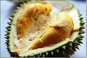 Durian Seeds