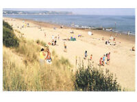 Dawlish Warren/Welcome Park,Clubs ,pools,entertainment. Bargain Short breaks Sept/Oct, Dog Welcome.