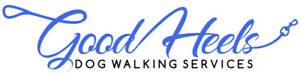 Hire a Professional, Reliable Dog Walker to Walk Your Dog