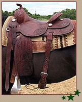 "Looking for a 15"" reining saddle"