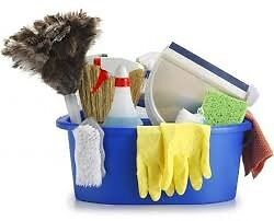 Cleaner- experienced and hart- working