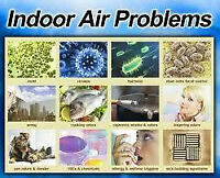 Asthma , Allergies, Indoor Air Problems Air Purifier Hepa
