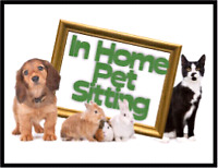 At your home pet sitting Services