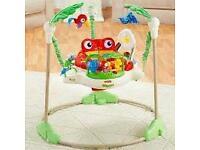 Rainforest Jumperoo! Baby bouncer